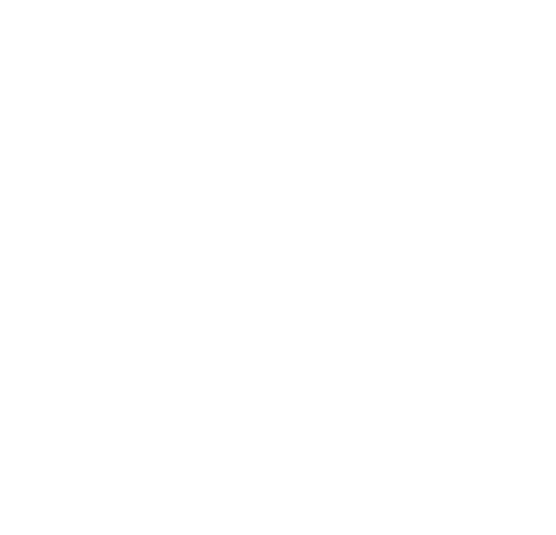 Hammer Corporation
